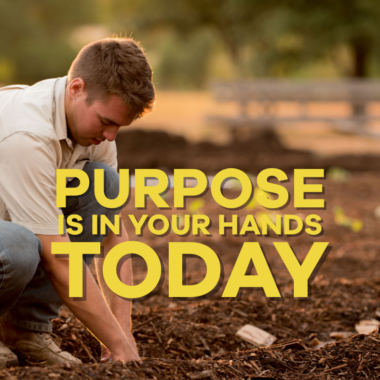 Find purpose today